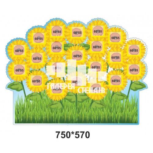 Стенд для фото класу: кошик соняшників