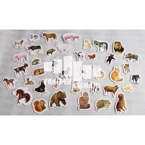 Дидактический материал  Животные