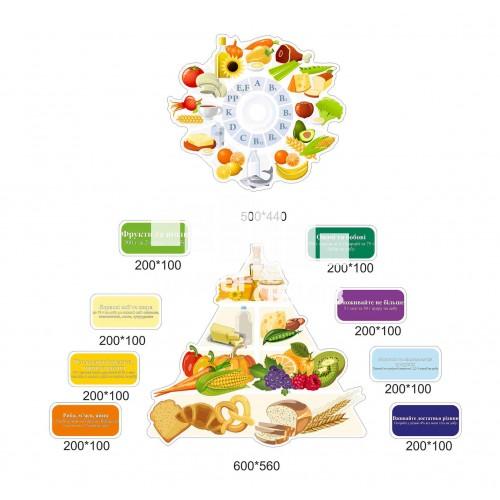 Сучасні стенди для їдальні школи - піраміда харчування
